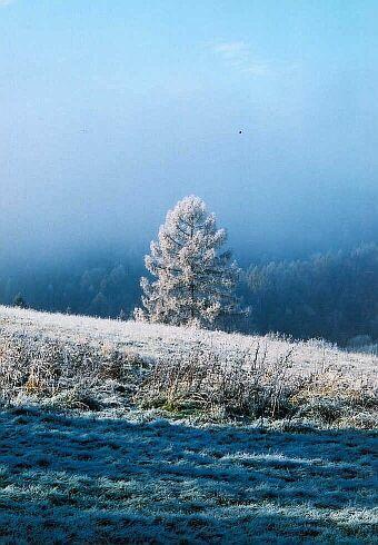 Prvá zima 2001
